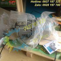 Y3PE-100LB4B5-moll-motor-vietnam-dong-co-dien-3-pha-3kw (3).jpg