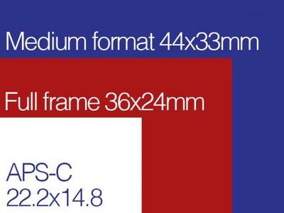 FF-MF-APS-C-Sensor-Comparisons-590x443.jpg