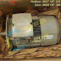 Y3PE-100LB4B5-moll-motor-vietnam-dong-co-dien-3-pha-3kw (2).jpg