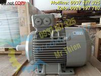 Y3PE-100LB4B5-moll-motor-vietnam-dong-co-dien-3-pha-3kw (6).jpg