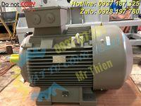 Y3PE-100LB4B5-moll-motor-vietnam-dong-co-dien-3-pha-3kw (4).jpg