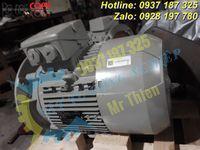 Y3PE-100LB4B5-moll-motor-vietnam-dong-co-dien-3-pha-3kw (5).jpg